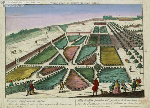 Avenue of Fruit Trees in the Pleasure Garden at Sanssouci (after 1745)