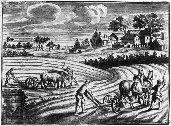 Horse- and Ox-Drawn Plows (1750)