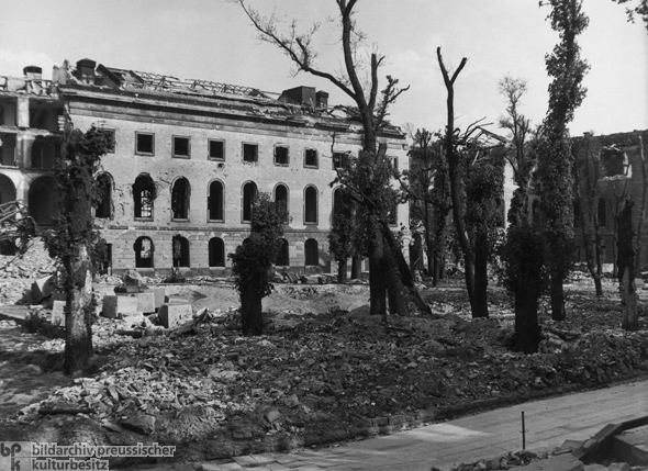 Trees amidst Debris (1945)
