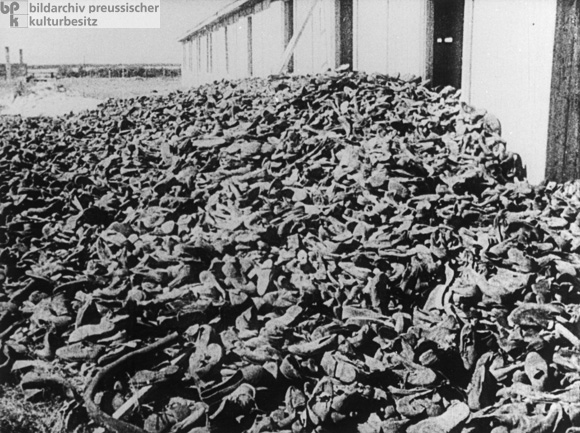 a report on the horrors of auschwitz concentration camp Witold pilecki was the first to report on the horrors taking place in the nazi concentration camp witold pilecki in auschwitz auschwitz concentration camp.