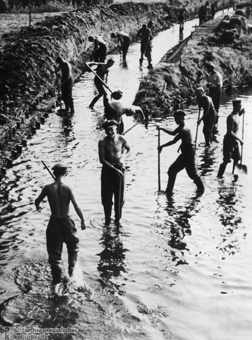 Land Reclamation: Members of the Reich Labor Service Construct Drainage Channels (1936)